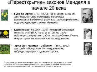 Гуго де Фриз (1848 -1935) голландский ботаник. Эксперименты на ослиннике Oenothe