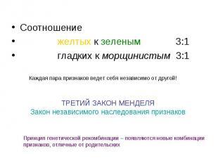 Соотношение Соотношение желтых к зеленым 3:1 гладких к морщинистым 3:1