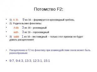 1) А- В- 9 из 16 – формируется ореховидный гребень. 1) А- В- 9 из 16 – формирует