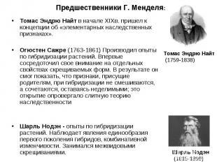 Томас Эндрю Найт в начале XIXв. пришел к концепции об «элементарных наследственн