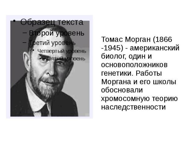 Томас Морган (1866 -1945) - американский биолог, один и основоположников генетики. Работы Моргана и его школы обосновали хромосомную теорию наследственности Томас Морган (1866 -1945) - американский биолог, один и основоположников генетики. Работы Мо…
