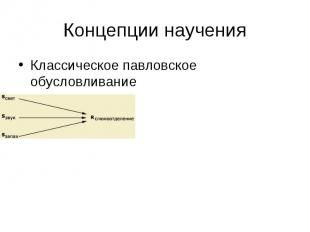 Концепции научения Классическое павловское обусловливание
