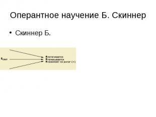 Оперантное научение Б. Скиннер Скиннер Б.