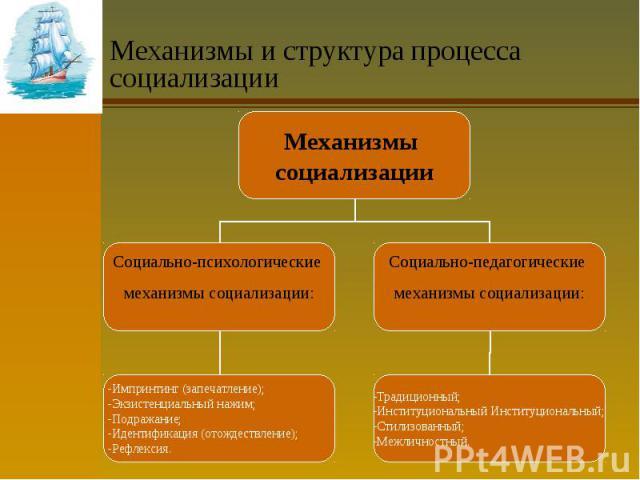 Механизмы и структура процесса социализации
