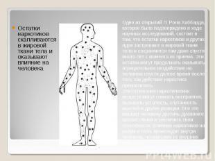Остатки наркотиков скапливаются в жировой ткани тела и оказывают влияние на чело