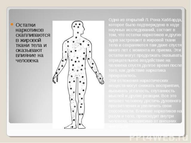 Остатки наркотиков скапливаются в жировой ткани тела и оказывают влияние на человека Остатки наркотиков скапливаются в жировой ткани тела и оказывают влияние на человека