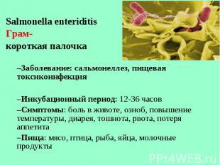 Salmonella enteriditis Salmonella enteriditis Грам- короткая палочка Заболевание