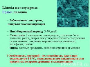 Listeria monocytogenes Listeria monocytogenes Грам+ палочка Заболевание: листери