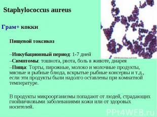 Staphylococcus aureus Staphylococcus aureus Грам+ кокки Пищевой токсикоз Инкубац