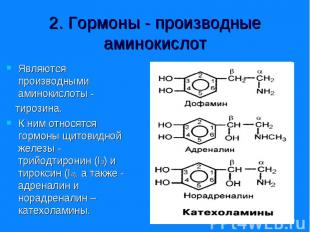 Являются производными аминокислоты - Являются производными аминокислоты - тирози