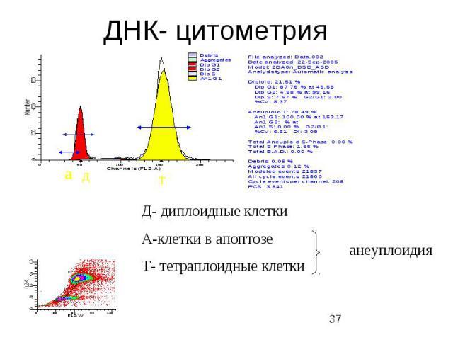 ДНК- цитометрия