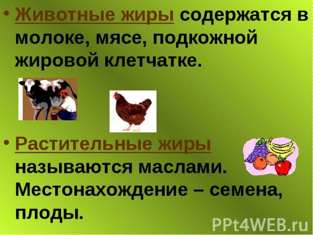 Животные жиры содержатся в молоке, мясе, подкожной жировой клетчатке. Животные жиры содержатся в молоке, мясе, подкожной жировой клетчатке. Растительные жиры называются маслами. Местонахождение – семена, плоды.