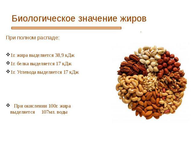 Биологическое значение жиров При полном распаде: 1г. жира выделяется 38,9 кДж 1г. белка выделяется 17 кДж 1г. Углевода выделяется 17 кДж При окислении 100г. жира выделяется 107мл. воды
