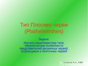 Тип Плоские черви (Plathelminthes) Задачи: Изучить характеристику типа, биологич