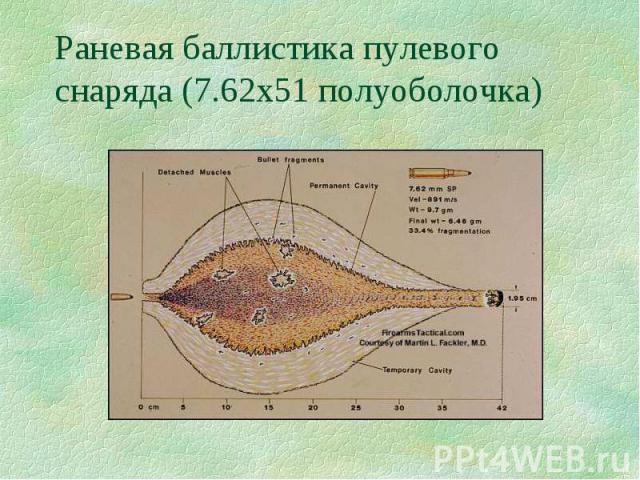 Раневая баллистика пулевого снаряда (7.62х51 полуоболочка)