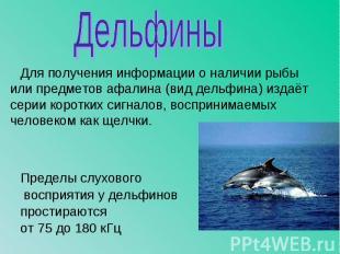 Для получения информации о наличии рыбы или предметов афалина (вид дельфина) изд