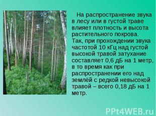 На распространение звука в лесу или в густой траве влияет плотность и высота рас