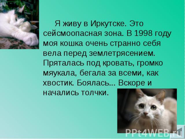 Я живу в Иркутске. Это сейсмоопасная зона. В 1998 году моя кошка очень странно себя вела перед землетрясением. Пряталась под кровать, громко мяукала, бегала за всеми, как хвостик. Боялась... Вскоре и начались толчки. Я живу в Иркутске. Это сейсмоопа…