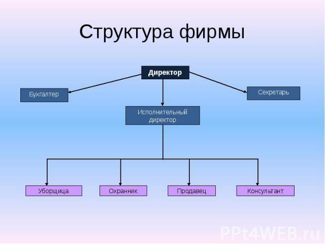 Структура фирмы