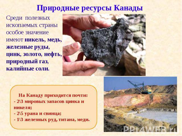 Среди полезных ископаемых страны особое значение имеют никель, медь, железные руды, цинк, золото, нефть, природный газ, калийные соли. Среди полезных ископаемых страны особое значение имеют никель, медь, железные руды, цинк, золото, нефть, природный…