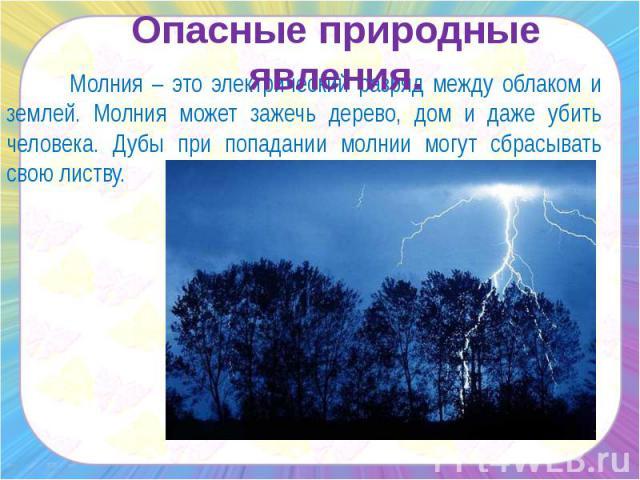 Опасные природные явления. Молния – это электрический разряд между облаком и землей. Молния может зажечь дерево, дом и даже убить человека. Дубы при попадании молнии могут сбрасывать свою листву.