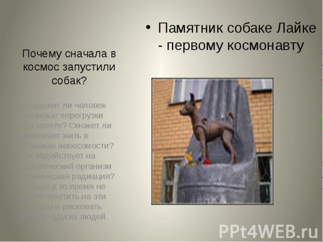 Почему сначала в космос запустили собак? Памятник собаке Лайке - первому космонавту