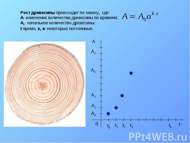 Рост древесины происходит по закону, где: A- изменение количества древесины во времени; A0- начальное количество древесины; t-время, к, а- некоторые постоянные.