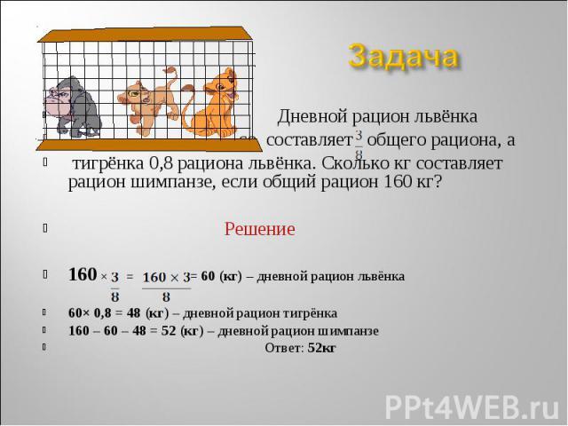 Дневной рацион львёнка Дневной рацион львёнка со составляет общего рациона, а тигрёнка 0,8 рациона львёнка. Сколько кг составляет рацион шимпанзе, если общий рацион 160 кг? Решение 160 × = = 60 (кг) – дневной рацион львёнка 60× 0,8 = 48 (кг) – дневн…