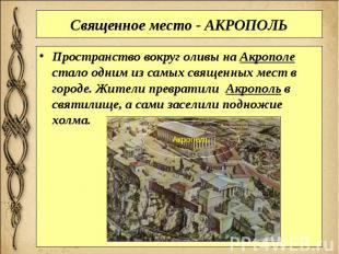 Священное место - АКРОПОЛЬ Пространство вокруг оливы наАкрополе стало одни