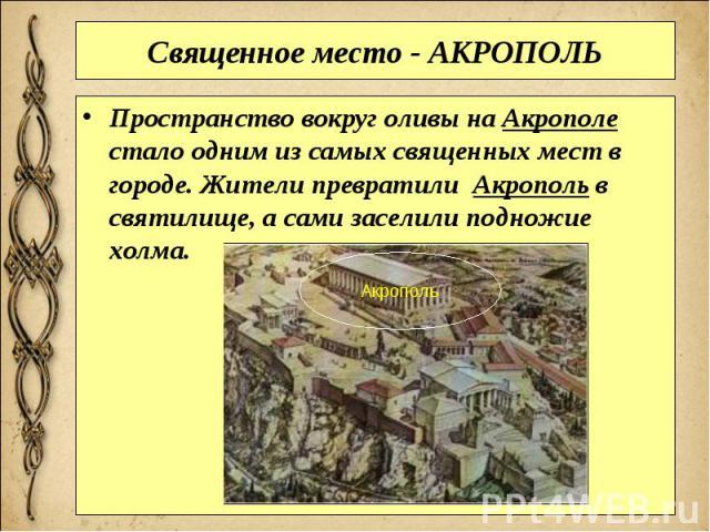 Священное место - АКРОПОЛЬ Пространство вокруг оливы наАкрополе стало одним из самых священных мест в городе. Жители превратили Акропольв святилище, а сами заселили подножие холма.