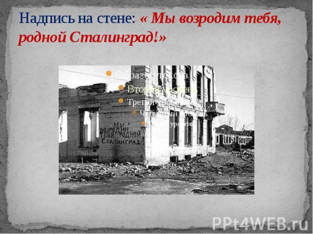Надпись на стене: « Мы возродим тебя, родной Сталинград!»