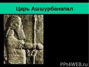 Царь Ашшурбанапал Ашшурбанапал- последний значительный царь Ассирии (669-630 гг.