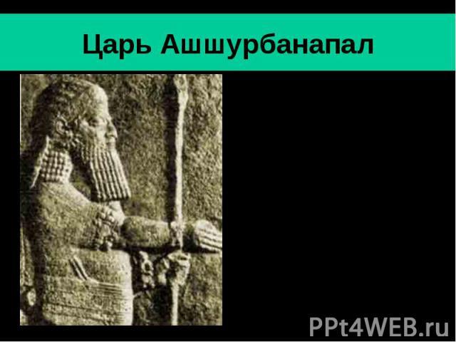 Царь Ашшурбанапал Ашшурбанапал- последний значительный царь Ассирии (669-630 гг. до н.э.).