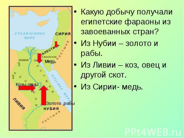 Какую добычу получали египетские фараоны из завоеванных стран? Какую добычу получали египетские фараоны из завоеванных стран? Из Нубии – золото и рабы. Из Ливии – коз, овец и другой скот. Из Сирии- медь.