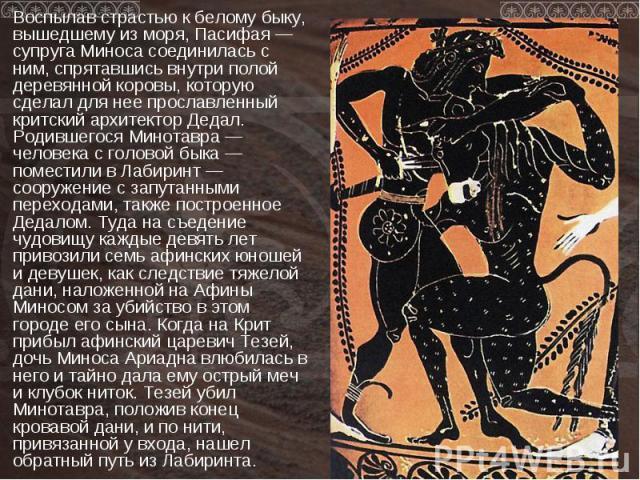 Воспылав страстью к белому быку, вышедшему из моря, Пасифая — супруга Миноса соединилась с ним, спрятавшись внутри полой деревянной коровы, которую сделал для нее прославленный критский архитектор Дедал. Родившегося Минотавра — человека с головой бы…