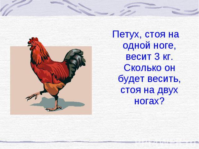 Петух, стоя на одной ноге, весит 3 кг. Сколько он будет весить, стоя на двух ногах? Петух, стоя на одной ноге, весит 3 кг. Сколько он будет весить, стоя на двух ногах?