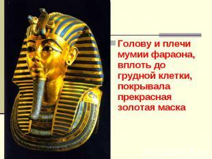 Голову и плечи мумии фараона, вплоть до грудной клетки, покрывала прекрасная зол