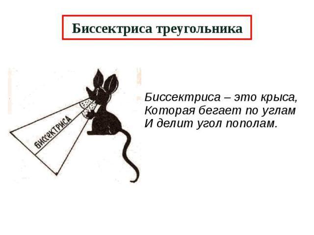 Биссектриса треугольника Биссектриса – это крыса, Которая бегает по углам И делит угол пополам.