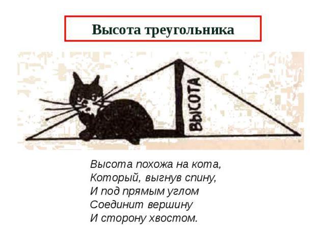 Высота треугольника Высота похожа на кота, Который, выгнув спину, И под прямым углом Соединит вершину И сторону хвостом.