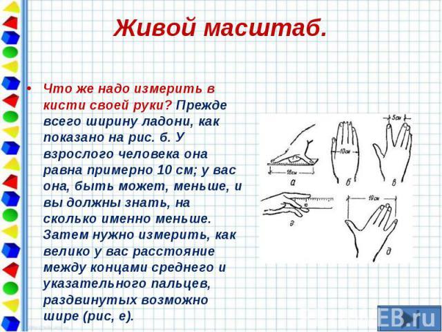 Что же надо измерить в кисти своей руки? Прежде всего ширину ладони, как показано на рис. б. У взрослого человека она равна примерно 10 см; у вас она, быть может, меньше, и вы должны знать, на сколько именно меньше. Затем нужно измерить, как велико …