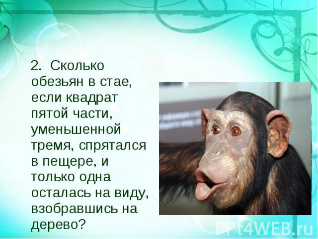 2. Сколько обезьян в стае, если квадрат пятой части, уменьшенной тремя, спрятался в пещере, и только одна осталась на виду, взобравшись на дерево? 2. Сколько обезьян в стае, если квадрат пятой части, уменьшенной тремя, спрятался в пещере, и только о…