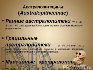 Австралопитецины (Australopithecinae) Австралопитецины (Australopithecinae) Ранн