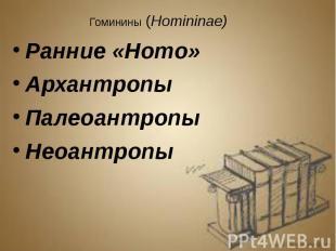 Гоминины (Homininae) Гоминины (Homininae) Ранние «Homo» Архантропы Палеоантропы