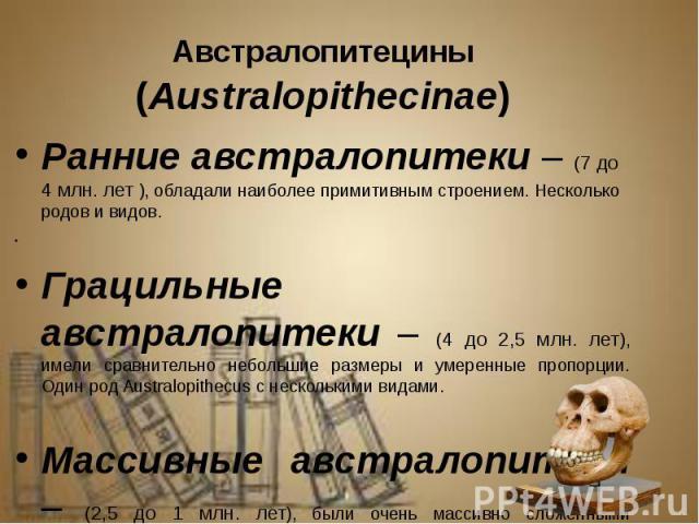 Австралопитецины (Australopithecinae) Австралопитецины (Australopithecinae) Ранние австралопитеки – (7 до 4 млн. лет ), обладали наиболее примитивным строением. Несколько родов и видов. Грацильные австралопитеки – (4 до 2,5 млн. лет), имели сравните…
