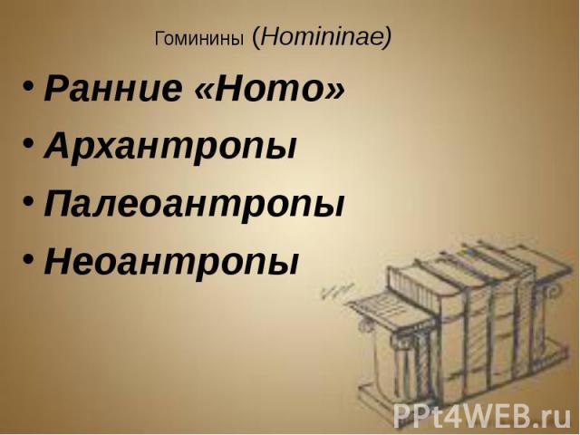 Гоминины (Homininae) Гоминины (Homininae) Ранние «Homo» Архантропы Палеоантропы Неоантропы