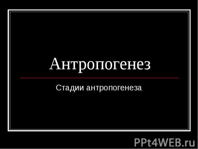 Антропогенез Стадии антропогенеза