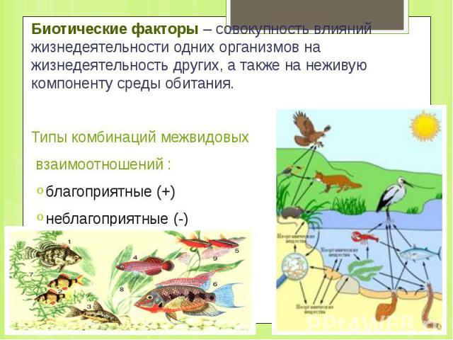 Биотические факторы – совокупность влияний жизнедеятельности одних организмов на жизнедеятельность других, а также на неживую компоненту среды обитания. Биотические факторы – совокупность влияний жизнедеятельности одних организмов на жизнедеятельнос…
