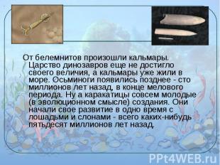 От белемнитов произошли кальмары. Царство динозавров еще не достигло своего вели