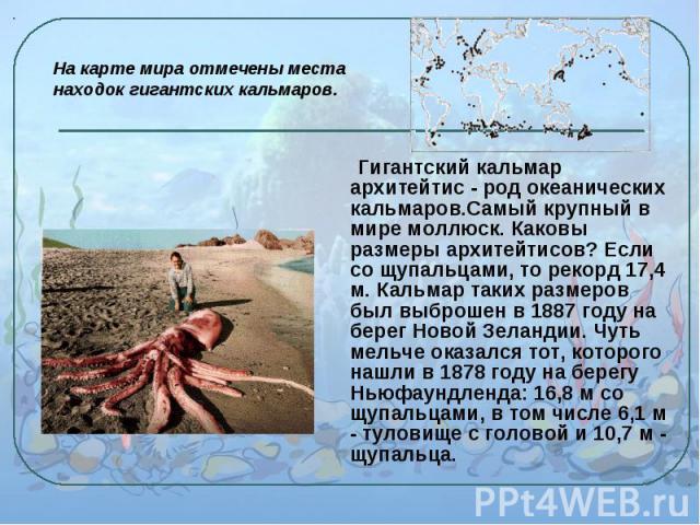 Гигантский кальмар архитейтис - род океанических кальмаров.Самый крупный в мире моллюск. Каковы размеры архитейтисов? Если со щупальцами, то рекорд 17,4 м. Кальмар таких размеров был выброшен в 1887 году на берег Новой Зеландии. Чуть мельче оказался…