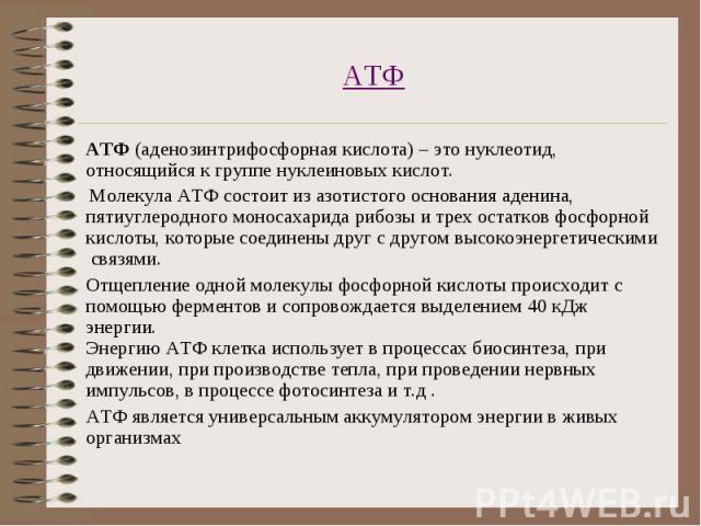 АТФ (аденозинтрифосфорная кислота) – это нуклеотид, относящийся к группе нуклеиновых кислот. АТФ (аденозинтрифосфорная кислота) – это нуклеотид, относящийся к группе нуклеиновых кислот. Молекула АТФ состоит из азотистого основания аденина, пятиуглер…